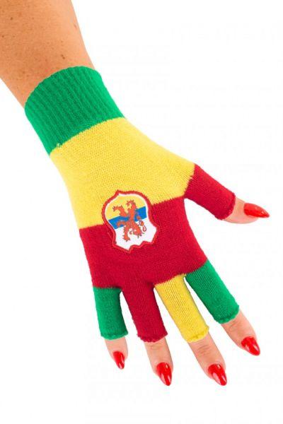 Vingerloze handschoenen met wapen van Limburg